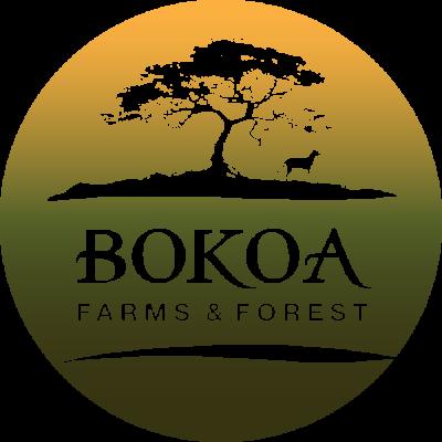 Bokoa Farms and Forest